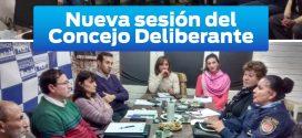 VII Sesión Ordinaria del Concejo Deliberante