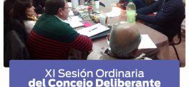 XI Sesión Ordinaria del Concejo Deliberante